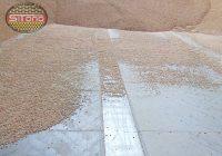 blachy perforowane do suszenia zbóż nasion